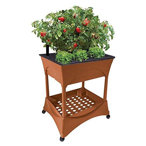 Vegetable Garden Box Kits Home Depot