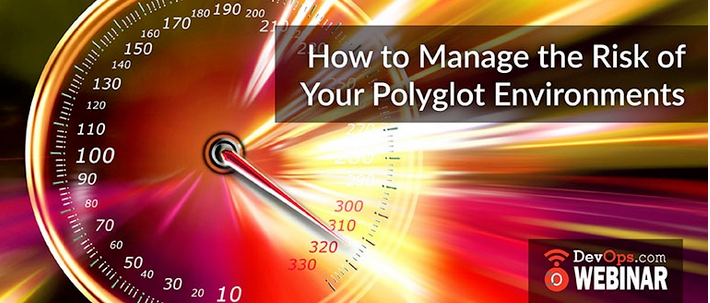 How to Manage the Risk of your Polyglot Environments