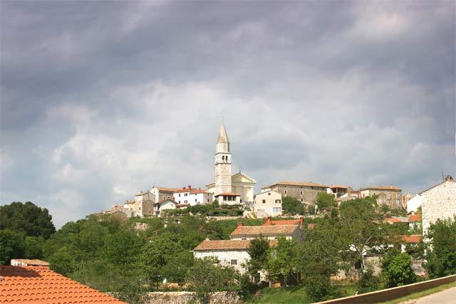 Conte Adriatic Vinjan Conte Adriatic
