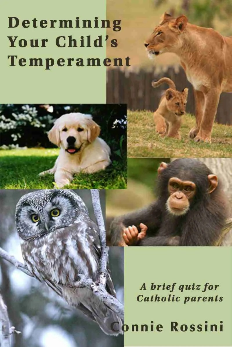 Determining Your Child's Temperament: A brief quiz for Catholic parents