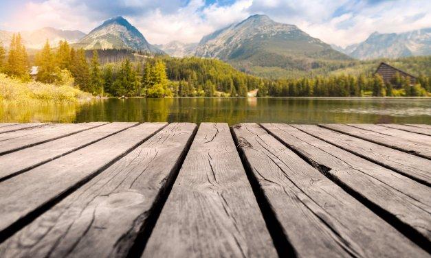 The Depth Of Stillness