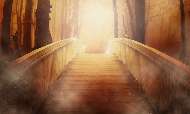 The Counterintuitive Path To Wisdom