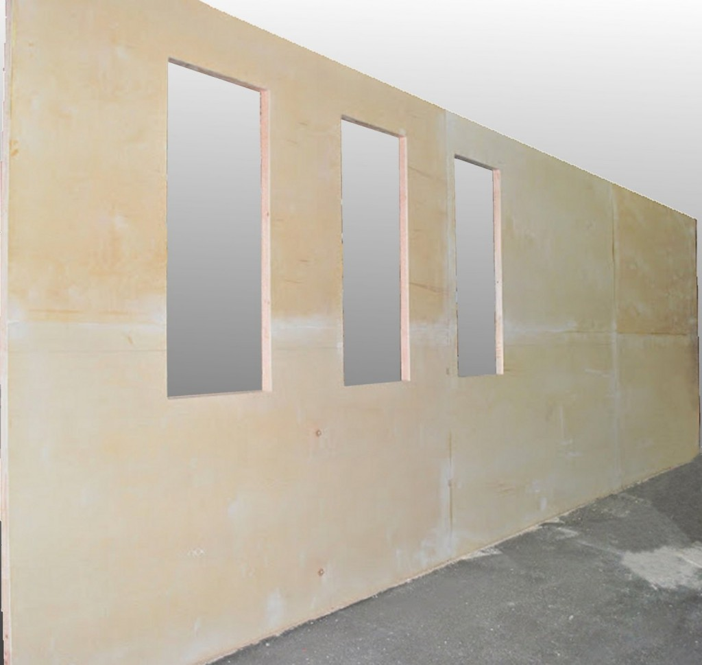 Modular Wall Panels Preconfigured Insulated Frameless Cam