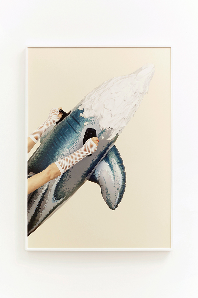 Juliana Paciulli, Uh-Huh (Dolphin) (2015). Archival pigment print in artist's frame, 28 x 39 inches. Image courtesy of the artist and Greene Exhibitions.
