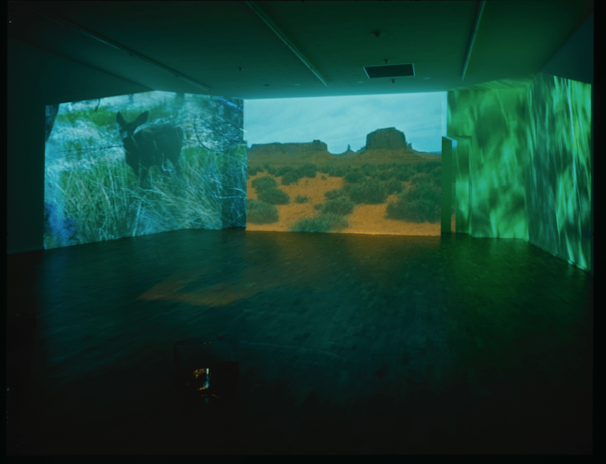 Diana Thater, Abyss of Light ( 1995). Three video projectors, three players, and Lee filters, dimensions variable. Image courtesy of the artist. Photo: Roman Mensing.
