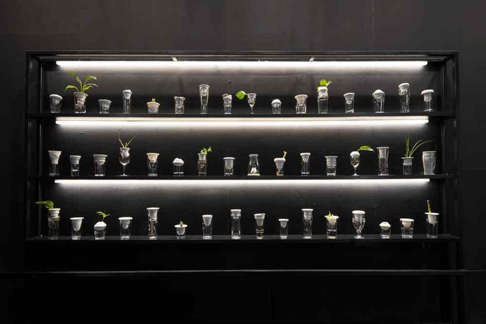Alicja Patanowska, installation Plantation installation, Shanghai, image courtesy artist