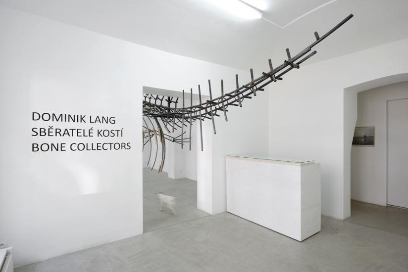 Dominik Lang, 'Bone Collectors', exhibition view, photo Ondřej Polák and courtesy of hunt kastner