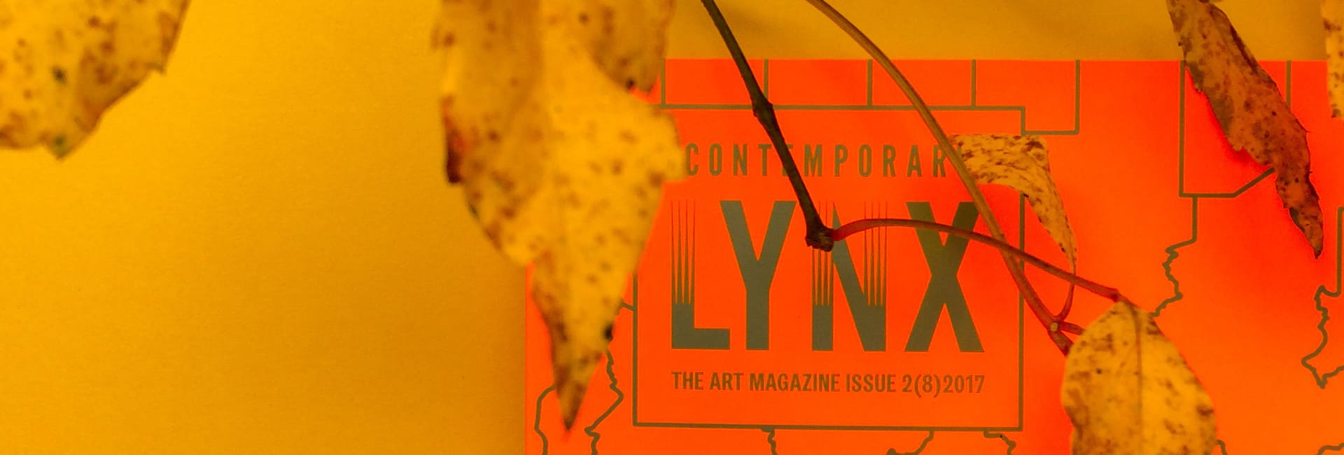 Contemporary Lynx baner autumn