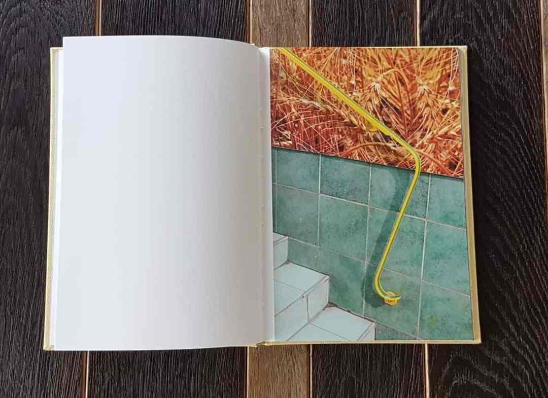 Disco Polo by Paulina Korobkiewicz, Self – published, 2016