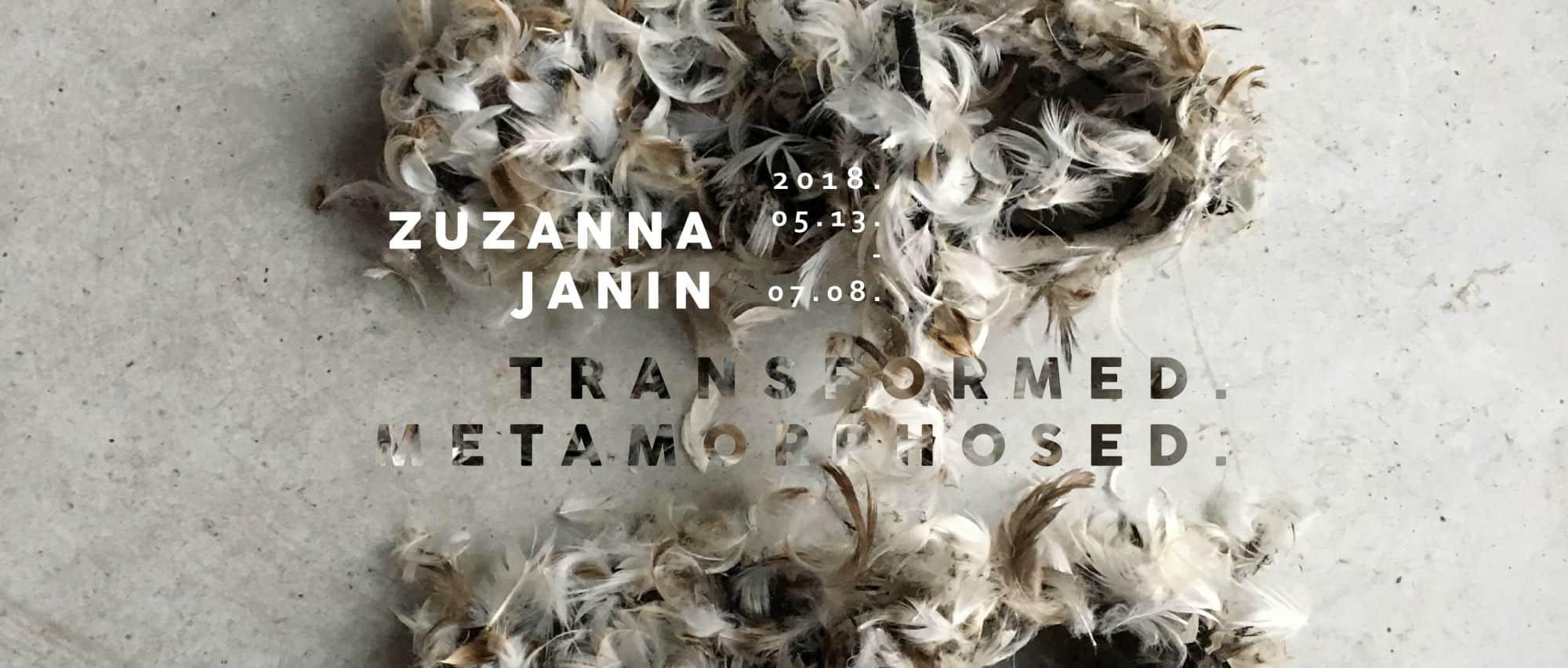 Zuzanna Janin exhibition