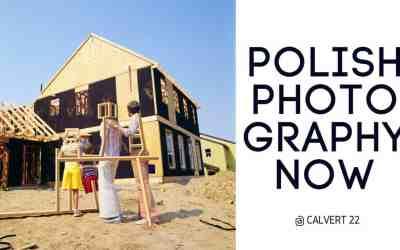 IS POLISH FAMILY NUCLEAR?