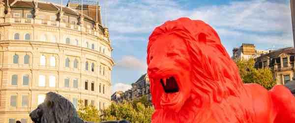 the four monumental lions in Trafalgar Square (2)