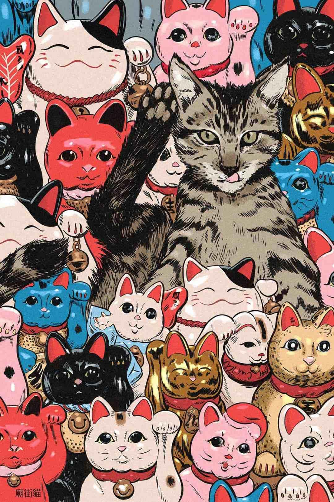 Mateusz Kołek, Temple Street Cats