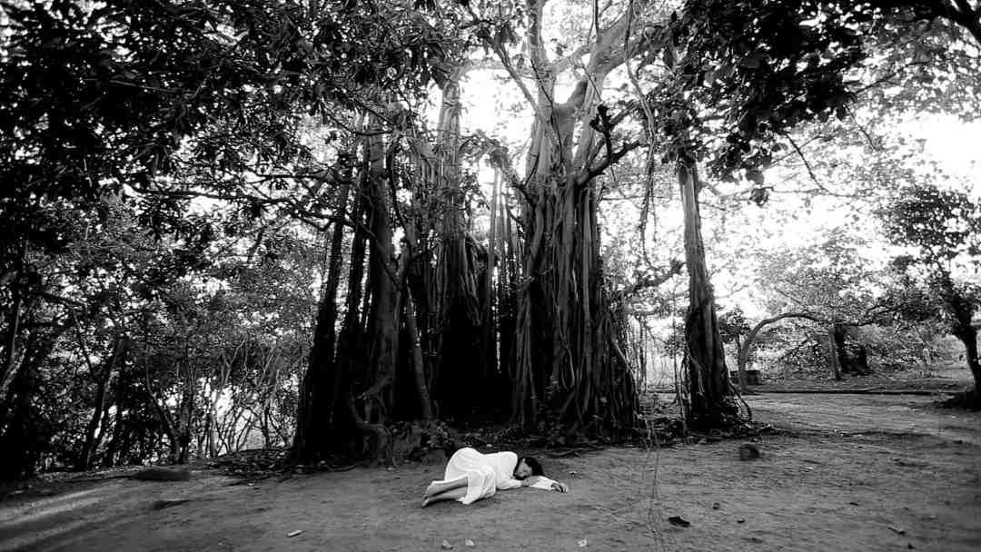 """Marina Abramović, """"Sleeping Under the Banyan Tree"""", Performans dokamerowy, 2010, © Marina Abramović, Dzięki uprzejmości Archiwum Mariny Abramović"""