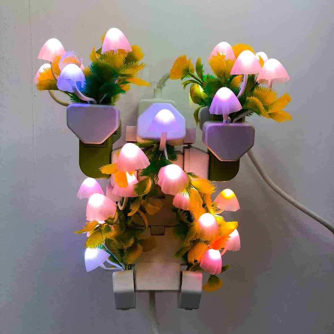 Galerie Allen, show by Trevor Yeung