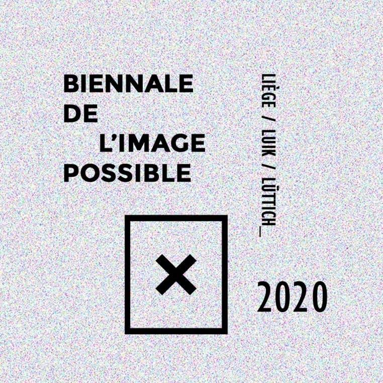 Biennale De L'Image Possible 2020