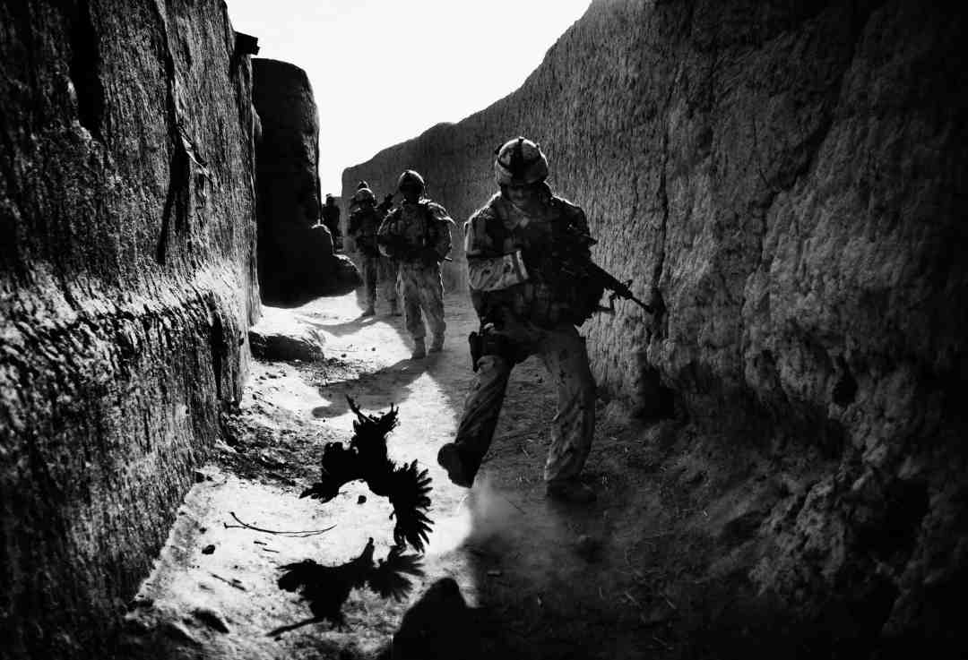 Anja Niedringhaus, A Canadian soldier with the Royal Canadian Regiment chases a chicken during a patrol in Salavat. Seconds later, the Canadian patrol comes under attack by militants who toss grenades over the wall, Salavat, Afghanistan, September 2010. © picture alliance / AP Images