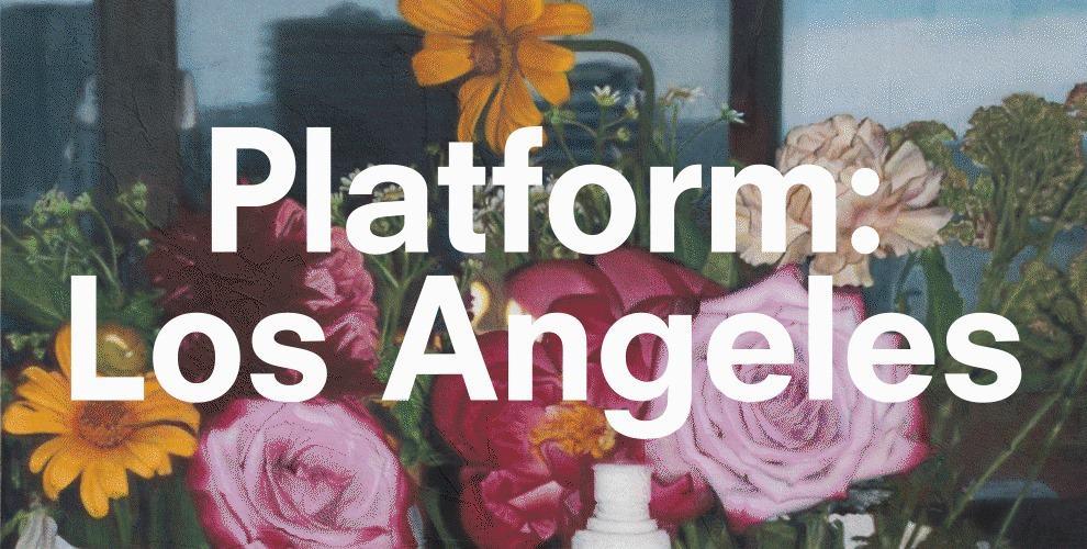 David Zwirner's virtual platforms