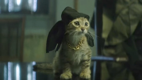 'Keanu' Is The Best Violent Comedy Starring A Cute Kitten You'll See This Year