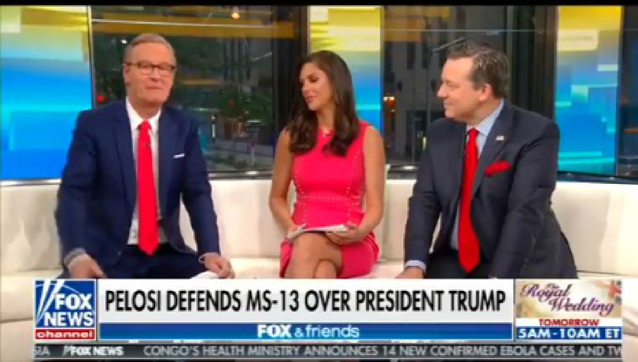 Fox's Ed Henry: Reporters Were 'Salivating' Like 'Rabid Dogs' Over Trump's 'Animals' Comment