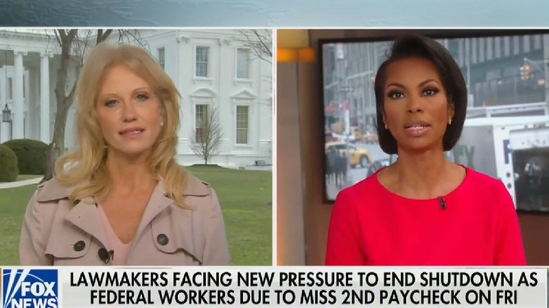 Kellyanne Conway Sputters When Fox's Harris Faulkner Grills Her On Trump Ending Shutdown