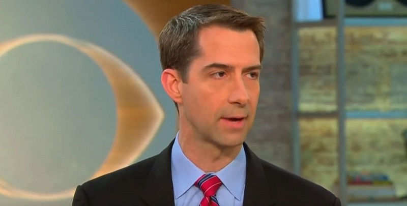 Tom Cotton Supports Trade War Because Sacrifices Are 'Minimal' Compared to a Real War