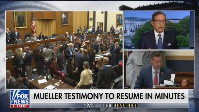 Fox's Chris Wallace: Mueller Testimony 'Has Been a Disaster for the Democrats' and His Reputation