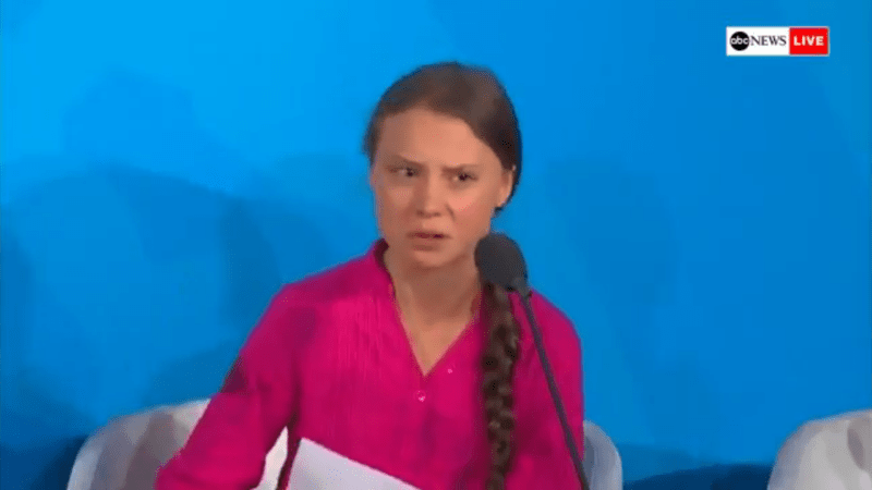 Greta Thunberg Shames the UN on Climate Change: 'You Have Stolen My Dreams and My Childhood with Your Empty Words'