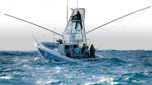 Download Contender Boats Over 35 Years Building Sport Fishing Boats 24 44