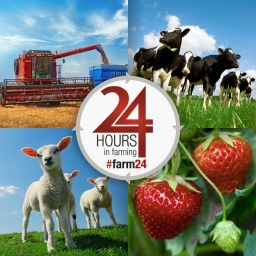 Image result for 24 hours in farming