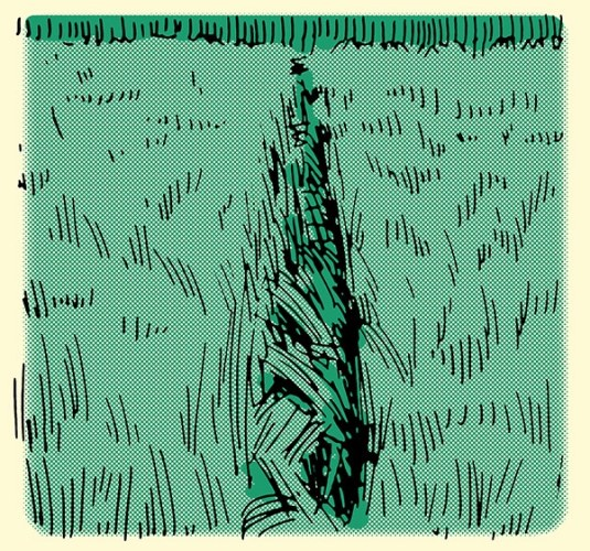 how to track a person grass disturbed in straight line illustration