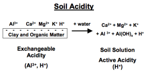 Soil Acidity and Liming for Agricultural Soils | NC State