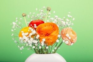A vase of flowers.