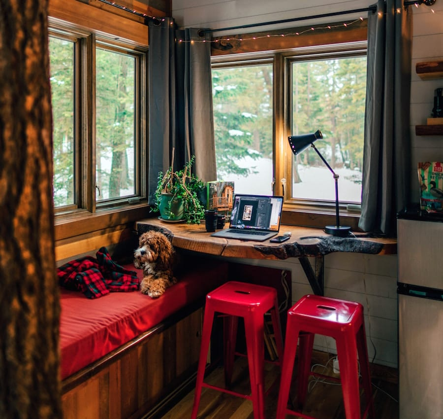 Tiny houses interior with windows, dog, and desk.