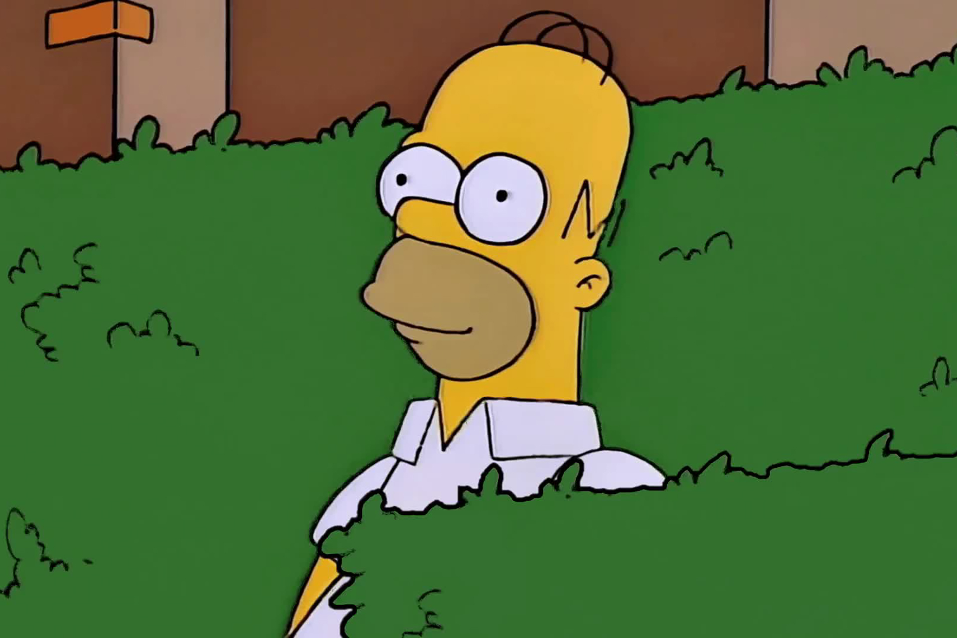 The Story Of The Homer Simpson Backs Into The Bushes Meme