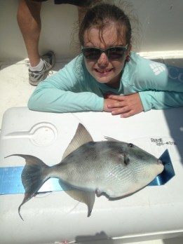 Katlyn with gray triggerfish