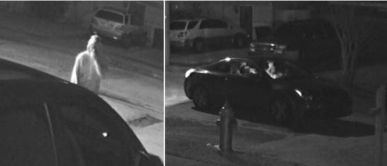 Suspect & Vehicle