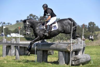 Image Result For Fence Scone Horse Trials