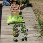 Cinder Block Planter 5 Steps With Pictures Instructables