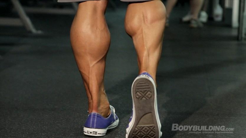Image result for bodybuilding calves