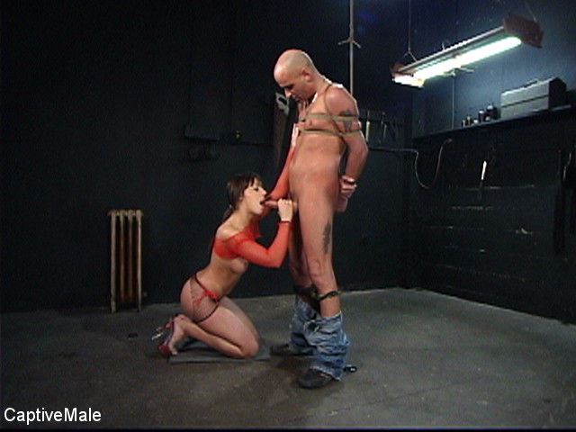 A BDSM Journey - submission