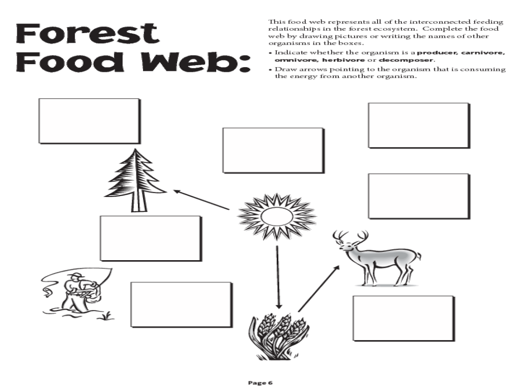 Food Web Worksheet Grade 5 Pay Icon In Contacts 6th Grader