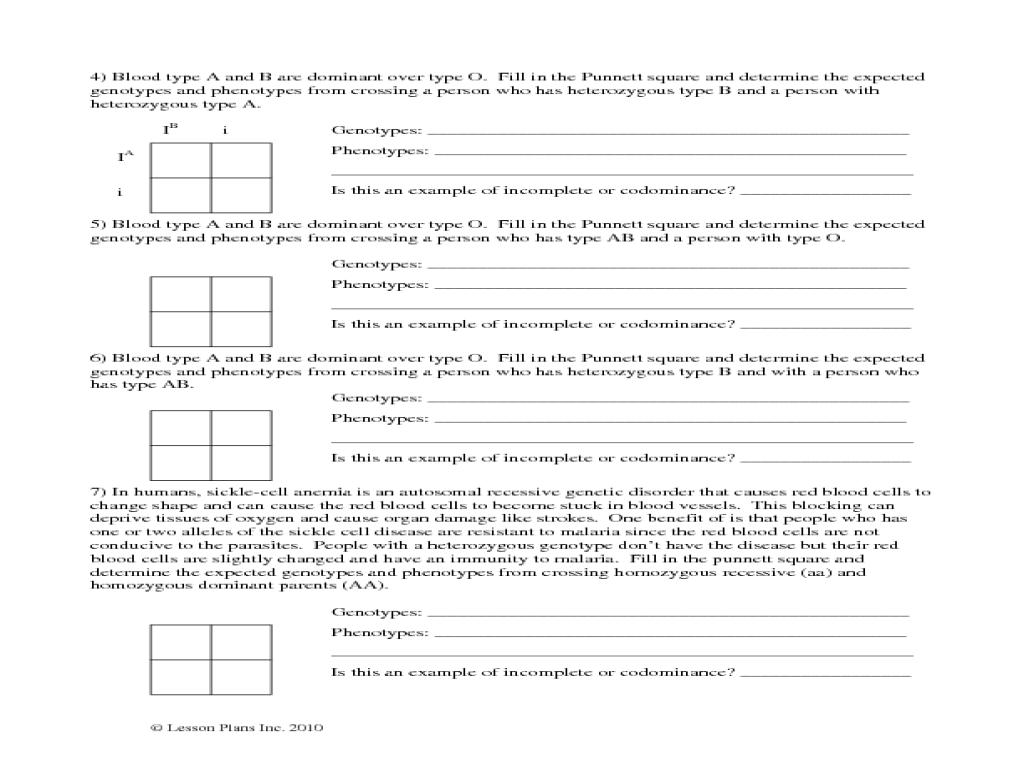 Punnett Square Worksheet With Answer Key