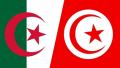 اتفاقية أمنية تونسية جزائرية لتعقب الإرهابيين والمهربين