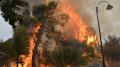 بلدان الجوار تتدخّل لإطفاء حرائق لبنان
