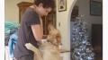 كلب يهدّئ من روع صاحبته المصابة بـالتوحّد ..