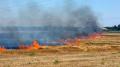 بوحجلة: النيران تلتهم هكتارين من الحبوب