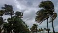 الثلاثاء.. أمطار متفرقة والحرارة في استقرار