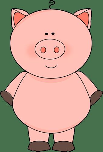 Cute Cute Pig
