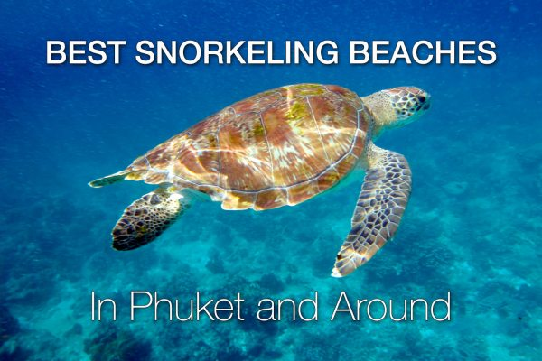11 Best Snorkeling Beaches in Phuket and Around